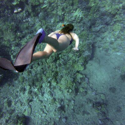 snorkeling-984422
